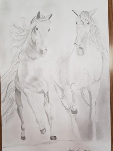 Gyula, lovak, haladó